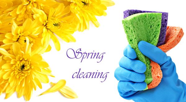 spring cleaning plumbing